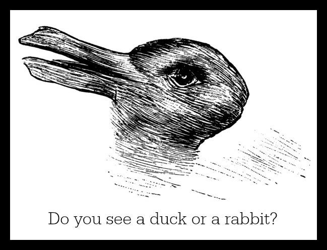 Rabbits and Ducks